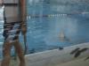 2012-09_schwimmen-seepferdchen-14